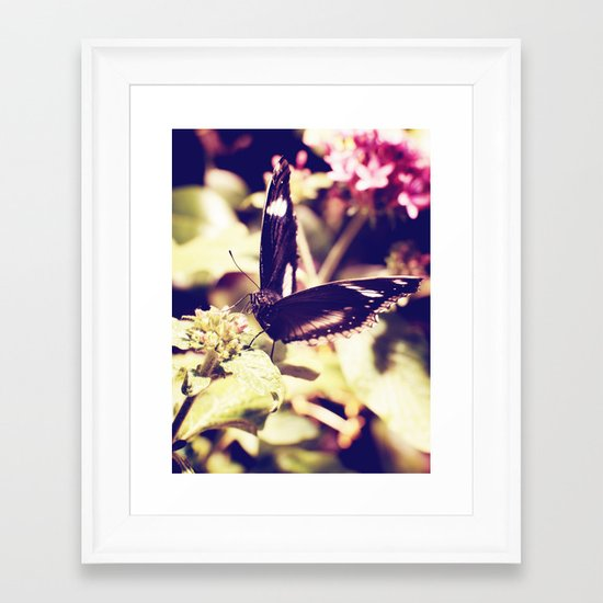 Perched Framed Art Print