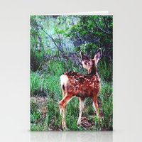 Descry Stationery Cards