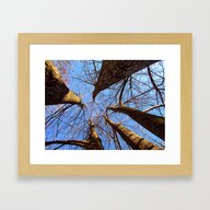 Looking Into The Heavens Framed Art Print