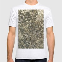 Old Gold Mens Fitted Tee Ash Grey SMALL