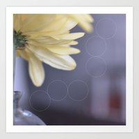 Yellow Daisies Art Print