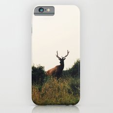 Prairie Creek Elk iPhone 6 Slim Case