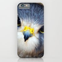 iPhone & iPod Case featuring Kestrel in close-up by Paul & Fe Photography