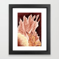 Platycerium Framed Art Print