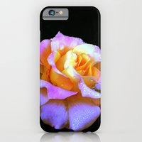 iPhone Cases featuring Pink And Gold Rose by minx267