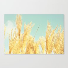 after-glow Canvas Print