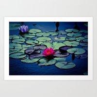 Twilight At The Lily Pon… Art Print