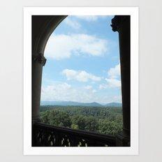 Biltmore Estates Art Print