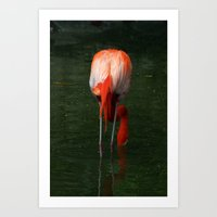 Shrimping Art Print