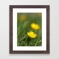 Buttercup Blur Framed Art Print