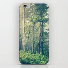 Inner Peace iPhone & iPod Skin