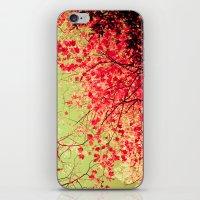 Color Drama II iPhone & iPod Skin