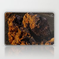 Rock In The Desert Laptop & iPad Skin