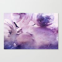 Where The Wild Roses Gro… Canvas Print