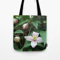 summer pink flower on vine. backyard floral photography. Tote Bag
