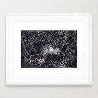 Winter's Bite Framed Art Print