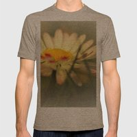 Daisy Mens Fitted Tee Tri-Coffee SMALL