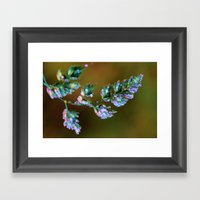 Tropical, feathers and dew Framed Art Print