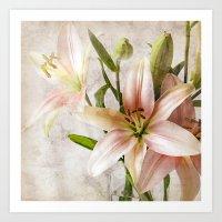 Textured Lilies Art Print