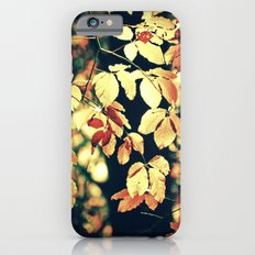 Autumnally  iPhone 6s Slim Case