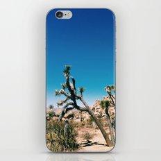 Joshua II iPhone & iPod Skin