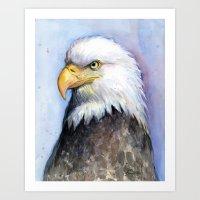 Bald Eagle Portrait Watercolor Painting Bird Art Print