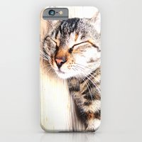 iPhone & iPod Case featuring Sleeping Cat by Digital-Art