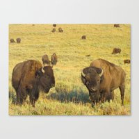 Buffalo Soldiers Canvas Print