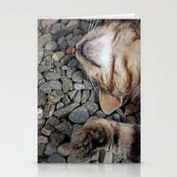 Ecstatic Cat Stationery Cards