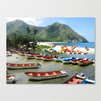 Chuao, Venezuela Canvas Print
