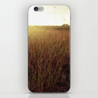 Sweet Sunset iPhone & iPod Skin