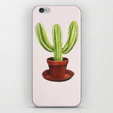 C A C T I  iPhone & iPod Skin