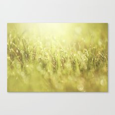 That Morning Thing Canvas Print
