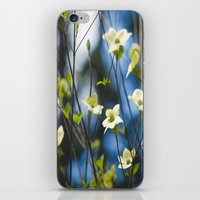 Dogwood iPhone & iPod Skin
