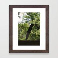 Knives Framed Art Print