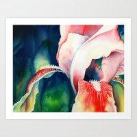 Tropical Iris Art Print