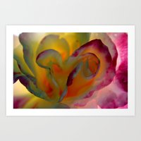 Rose Abstract Art Print
