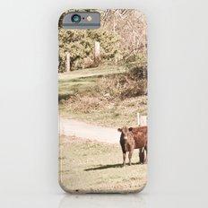 How Now! iPhone 6s Slim Case