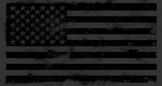 American Brain Flag Canvas Print