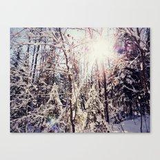 winter hike Canvas Print