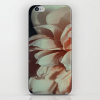 Wildeve Rose No. 1 iPhone & iPod Skin