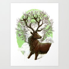 Red Stag Art Print