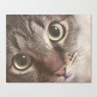 Kitty magic Canvas Print
