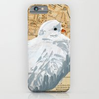 Fan-tailed Dove iPhone 6 Slim Case