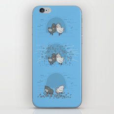 And then they blew up iPhone & iPod Skin