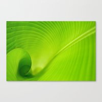 Look Inside Canvas Print