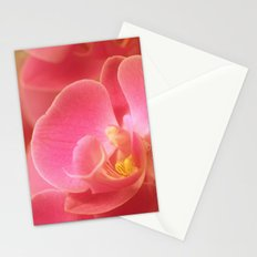 Pink Pastel 32 Stationery Cards