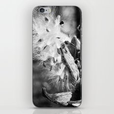 Milkweed 1 iPhone & iPod Skin
