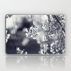 Weeping Cherry in Black and White Laptop & iPad Skin
