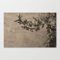 Oriental Breeze Canvas Print